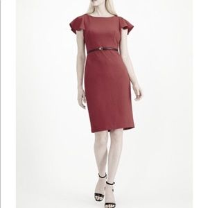 Calvin Klein Belted Ruffle-Sleeve Sheath Dress 10